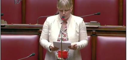 Il blocco del 5G passa anche dal parlamento